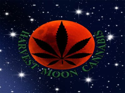 Harvest Moon Cannabis