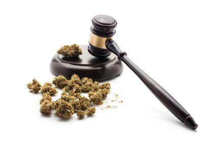Can Medical Marijuana Laws Reduce Crime?