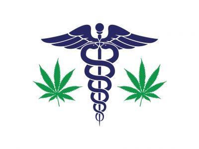 Marijuana Can Kill Cancer Cells, U.S Insists